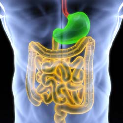 Colonic Irrigation